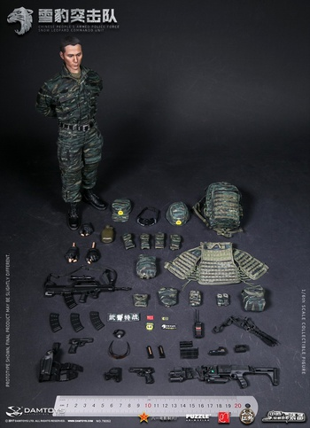 "DAM Toys 1/6 Scale 12"" Marine Force Combat Action Figure 78055 #78055"