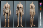 "Play Toy 1/6 Scale 12"" Female Caucasian Body 2.0 C Cup PT-M003 PT-M003"