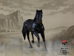 "303 Toys 1/6 Scale Black Horse for 12"" Action Figure No. 102 102"