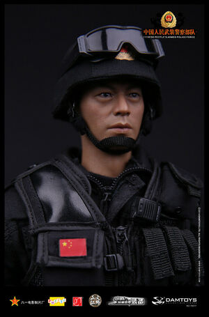 "DAM Toys 1/6 Scale 12"" Chinese Peoples Armed Police Force Action Figure 78017 78017"